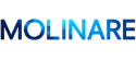 client_logo_molinare.png